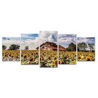 חווה בשדה חמניות