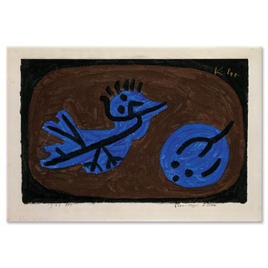 דלעת ציפור כחולה