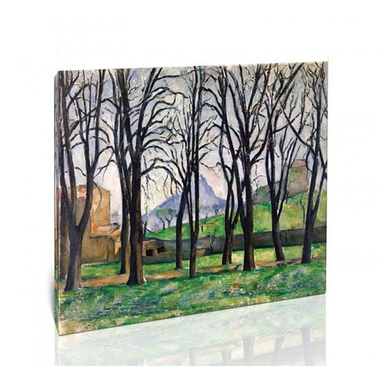 עצי ערמונים בגאס דה בופאן