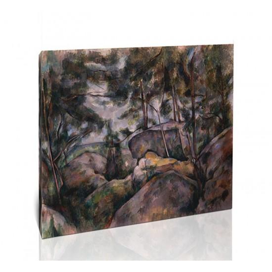 סלעים ביער