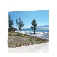כנרת, חוף גופרה