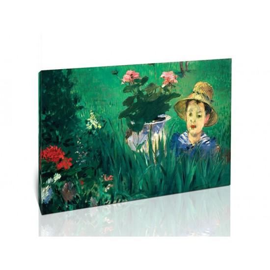 ילד בין הפרחים