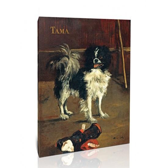 טאמה - הכלב היפני