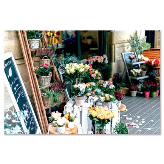 חנות פרחים, ברצלונה