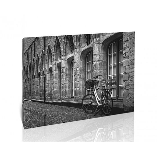 אופניים בשחור לבן