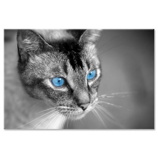 עיניים כחולות