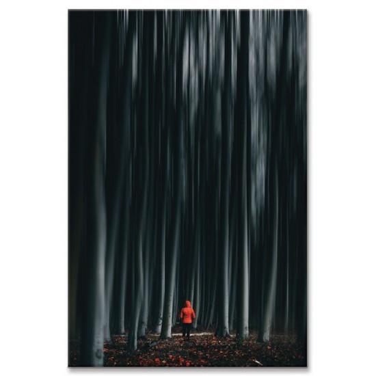 כיפה אדומה