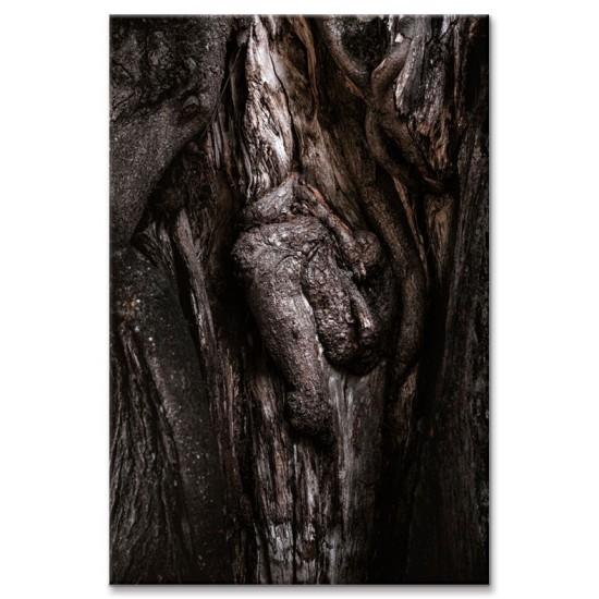 דמות בגזע עץ