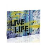 חיה את החיים