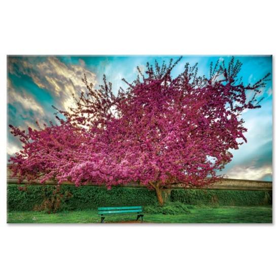 עץ סגול