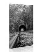 פסי רכבת ומנהרה