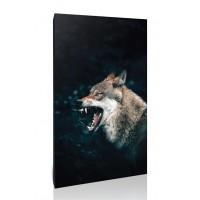 זאב נוהם