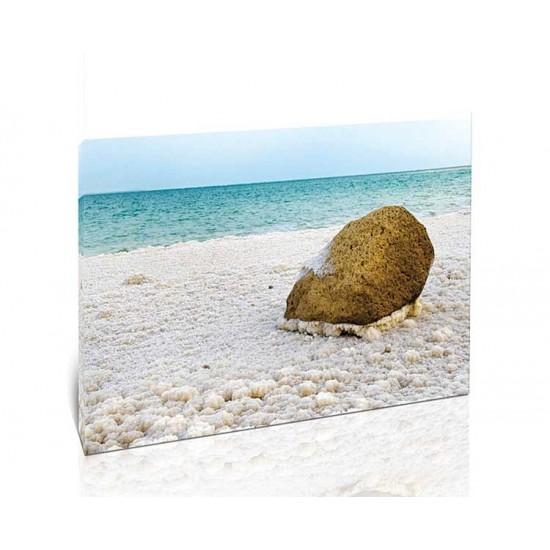 סלע בודד, ים המלח