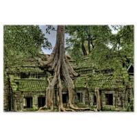קרונג סיאם ריפ, קמבודיה