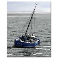 סירת מפרש בשפל