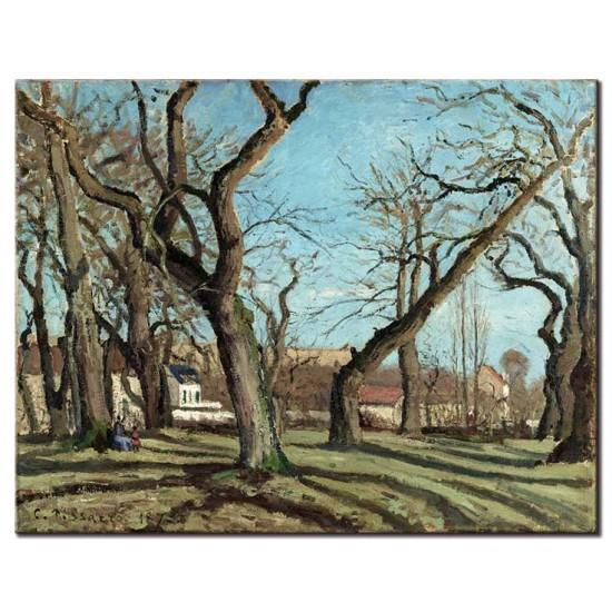 חורשת עצי ערמון, לוביסיין