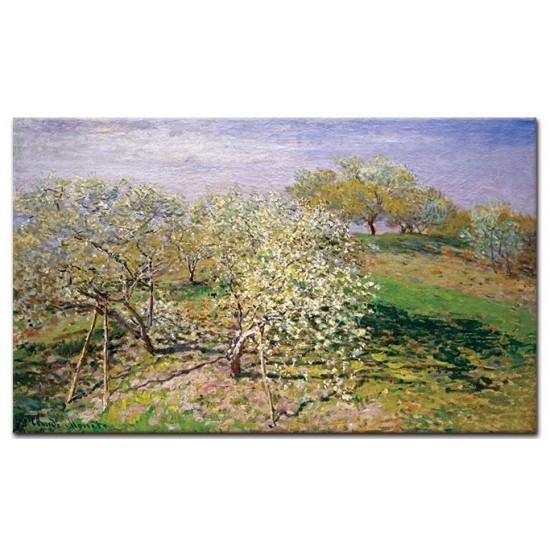 פריחת עצי התפוח (אביב)
