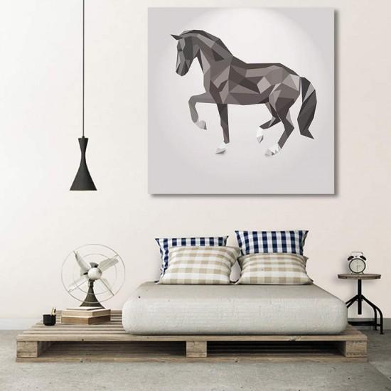 סוס שחור לבן