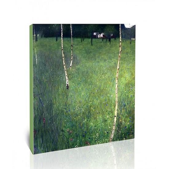 בית חווה עם עצי ליבנה