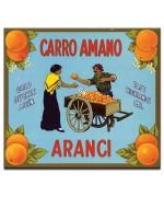 Aranchi