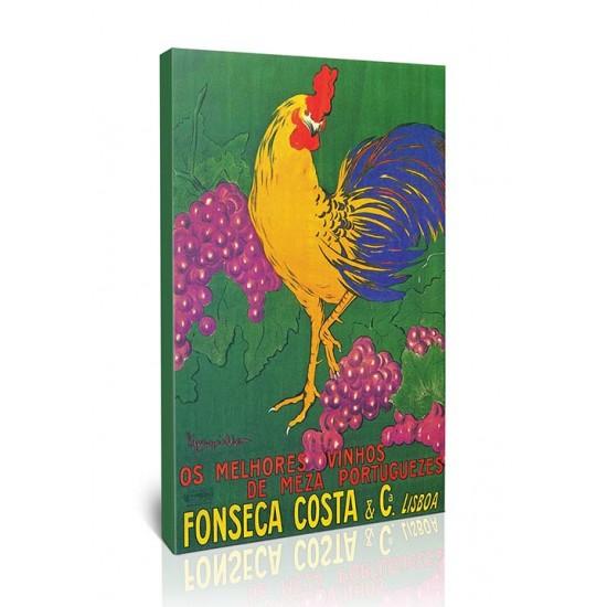 Fonseca Costa