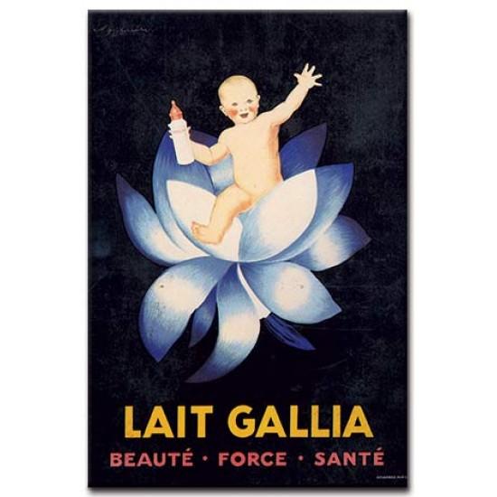 Lait Gallia