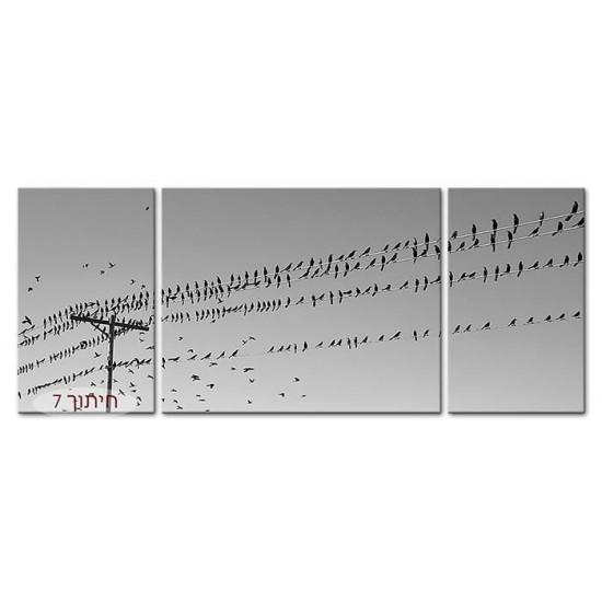 ציפורים על חוטי חשמל