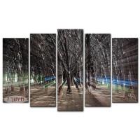 האנרגיה של היער