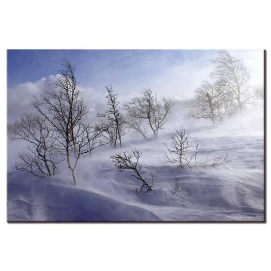 סופת שלג, נורווגיה