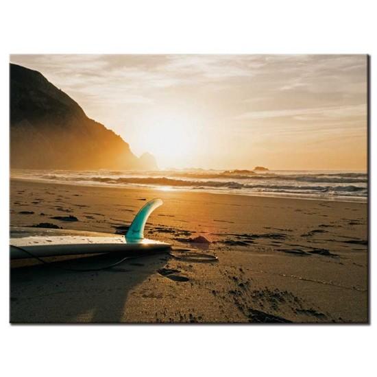 גלשן על החוף
