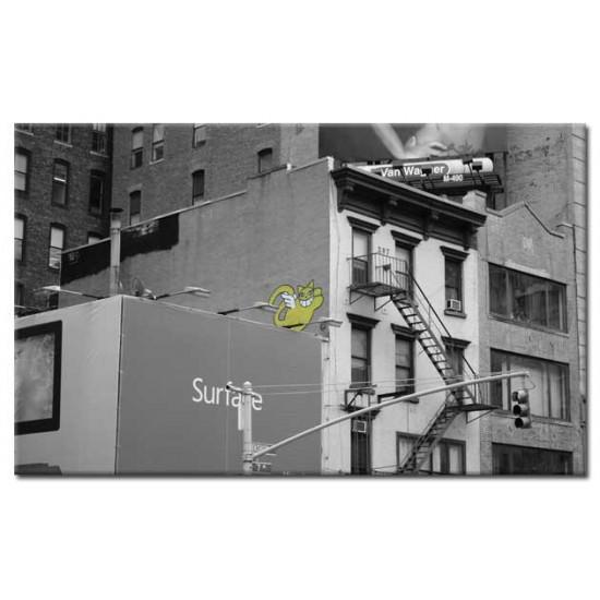 גרפיטי ניו יורקי