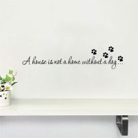 A House is not Home Without a Dog